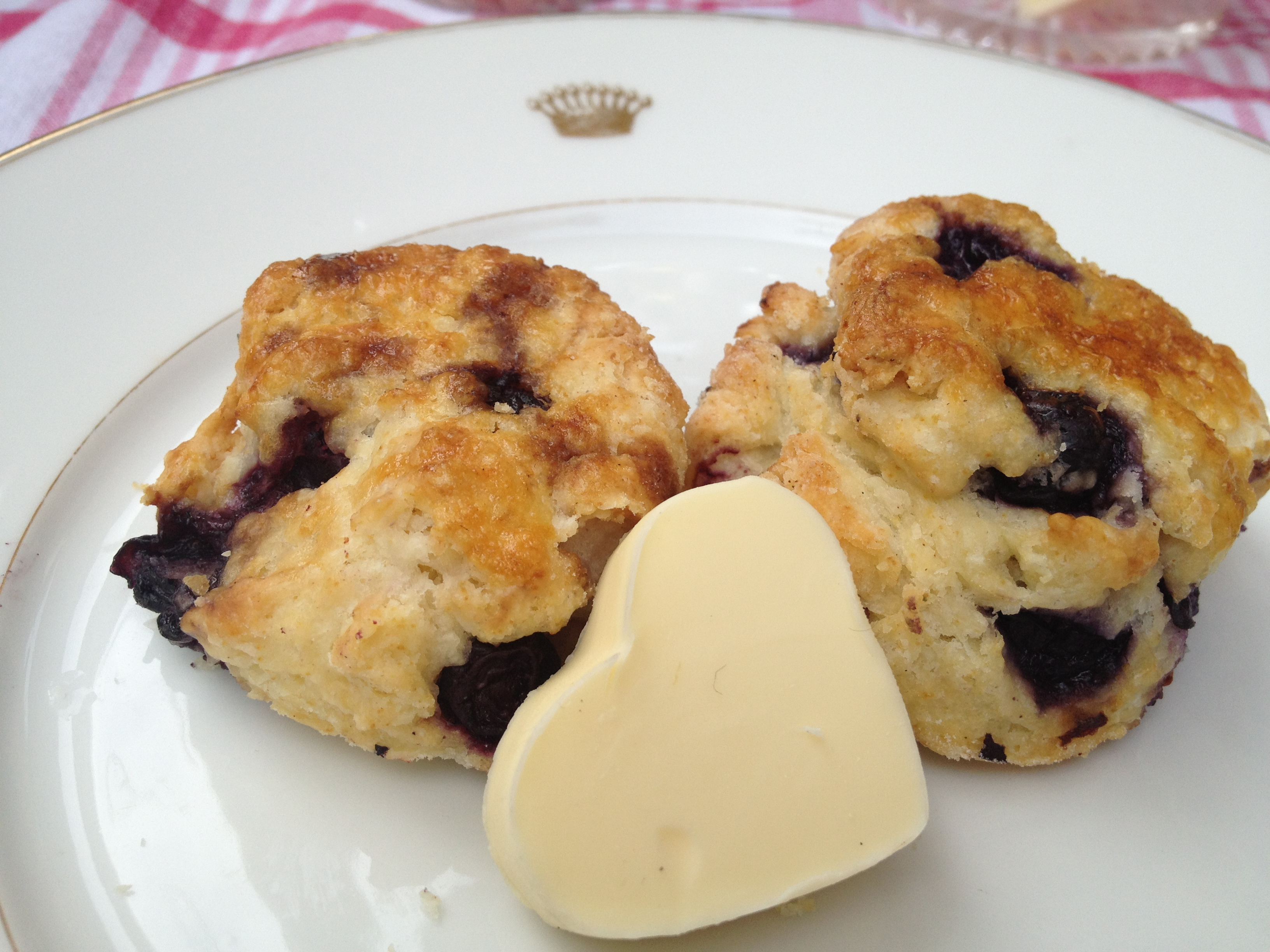 Breakfast recipes pdf cookbook austrian chef vanessas delicious blueberry scones forumfinder Images