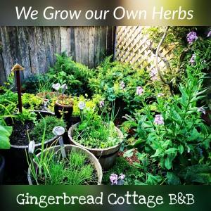 Herb Garden Gingerbread Cottage Victoria BC Canada