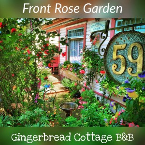 Front Patio Rose Garden Gingerbread Cottage Victoria BC Canada